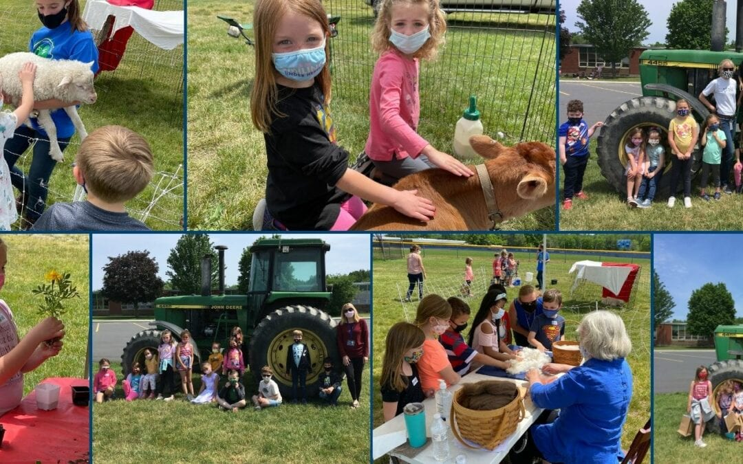 PICTURES: Agriculture Day at the Primary School!
