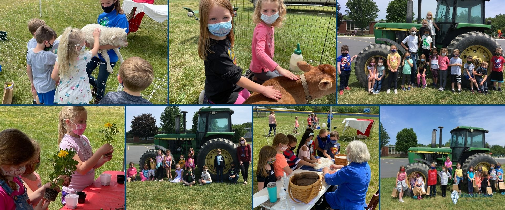 AG Day at the Primary School